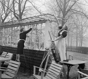 Spring cleaning in the Vondelpark, Amsterdam, March 1961